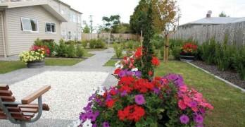 https://www.villageguide.co.nz/bupa-david-lange-care-home-1