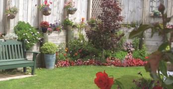 https://www.villageguide.co.nz/bupa-the-gardens-retirement-village-1-bedroom-unit-1
