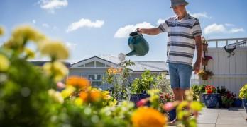 https://www.villageguide.co.nz/greenwich-gardens-metlifecare-apartments-4