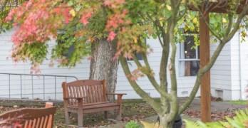 https://www.villageguide.co.nz/ultimate-care-lansdowne-court-1-bedroom-with-a-bonus-6025